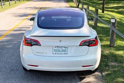 Model 3 Spoiler 2