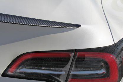 Tesla Spoiler Gloss Carbon Fiber