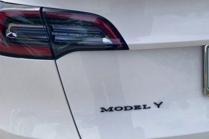 Model Y Emblem